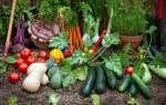 «Добавка микроэлементная удобрительная» полноценное питание ваших растений