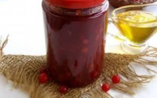 Калина красная вкусное лекарство, рецепт на зиму