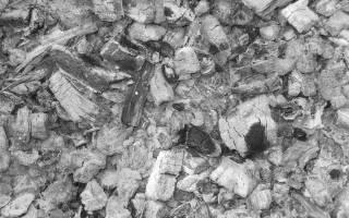Вытяжка из золы — уникальное природное удобрение