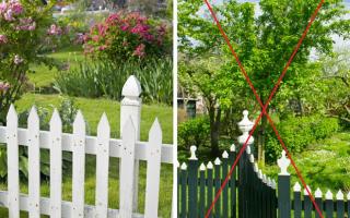 Как «заставить» маленький сад выглядеть больше 7 главных правил.