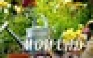 Флоризель (Florizel) — органические удобрения ( Кто пользовался ваше мнение)