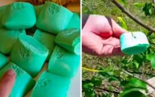 Соседка завязывает мыло в мешочки и подвешивает их в саду