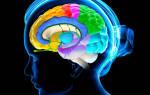 Очищение сосудов головного мозга. Проверенные методики