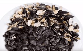 Использование шелухи от семечек на огороде как удобрение