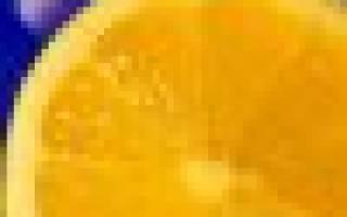 Шелуха подсолнечника — универсальная органика