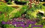 График цветения садовых цветов.
