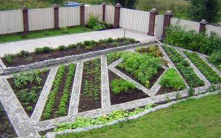 Мой любимый Домик в деревне — декоративный огород!