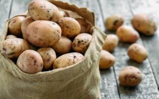 5 главных правил успешной зимовки картофеля.