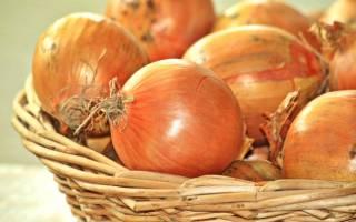 Луковая шелуха это уникальное природное средство для борьбы с вредителями и отличное удобрение для растений
