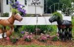 Чтобы садовый шланг не валялся где попало, прикрепите к стене старое ведро и намотайте на него шланг