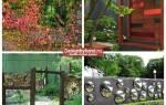 Комбинации интересных идеи для сада и огорода своими руками