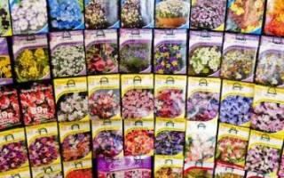 Обозначения на упаковках семян.