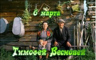 6 марта — Тимофей Весновей.