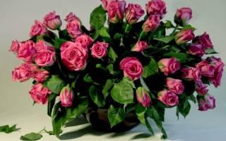 Можно ли вырастить розы из букета