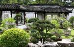 Китайский сад. Растения.