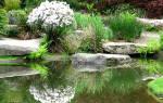 Планируя ландшафтный дизайн на своём земельном участке, многие владельцы часто обустраивают искусственные водоемы, пруды