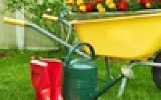 Здравствуйте дорогие садоводы-огородники