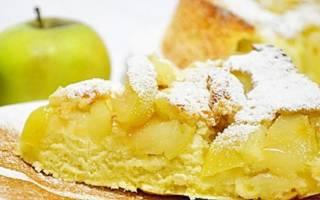 3 лучших рецепта шарлотки с яблоками