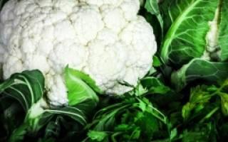 Получаем большой урожай цветной капусты