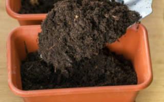 Что нельзя добавлять в почву для рассады