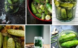 3 способа приготовить аппетитные малосольные огурчики