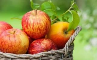 Из яблок можно приготовить отличную заготовку на зиму — яблочный «мед». Натуральный пектин, содержащийся в яблочной кожуре придаст со временем сиропу структуру желе